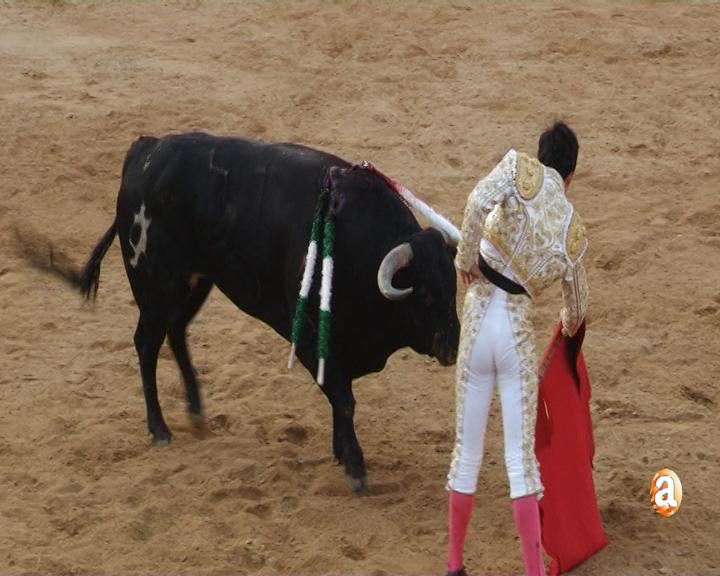 Imagen de archivo: festejo taurinos